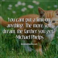 You cant put a limit on anything. The more you dream, the farther you get. -Michael Phelps