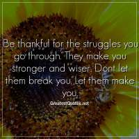 Be thankful for the struggles you go through. They make you stronger and wiser. Dont let them break you. Let them make you
