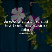 In order to succeed, you must first be willing to experience failure