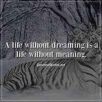 A life without dreaming is a life without meaning.