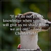 If we do not plant knowledge when young, it will give us no shade when we are old. - Lord Chesterfield